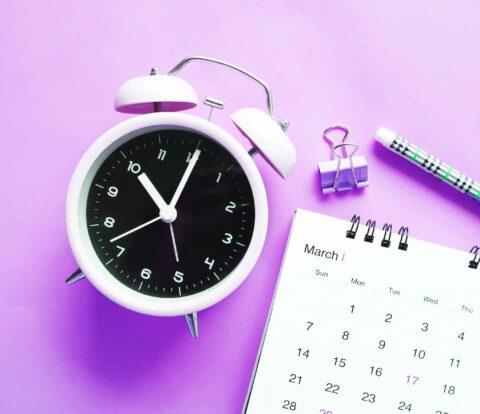 365 Day Social Media Content Calendar Templates by Hexotica